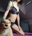 wild_kitty